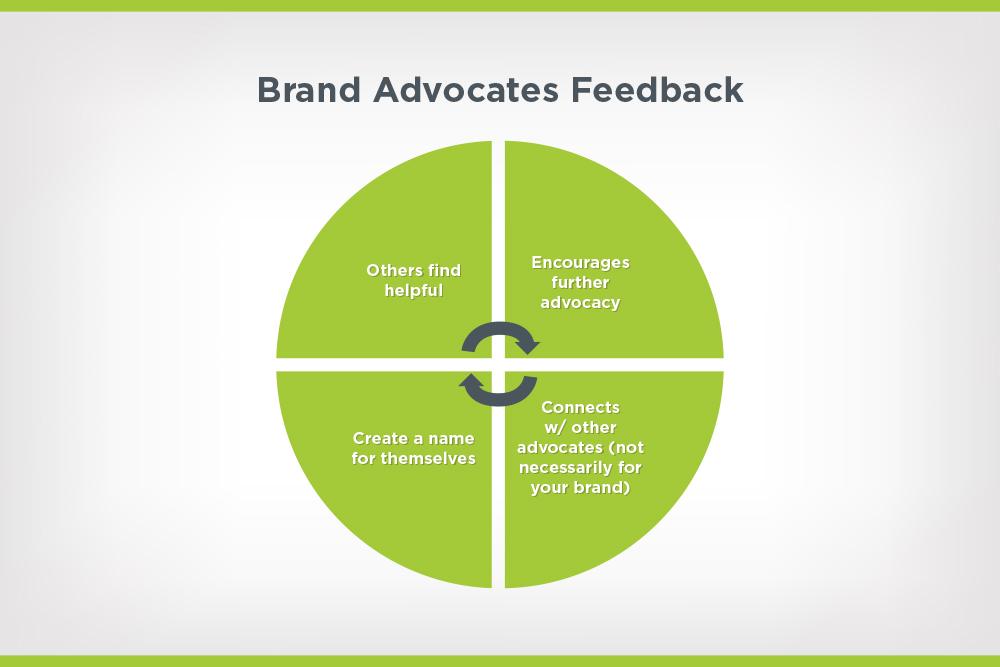 brand advocates feedback