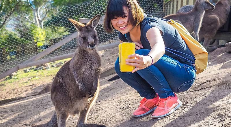 Chinese visitor in Australia